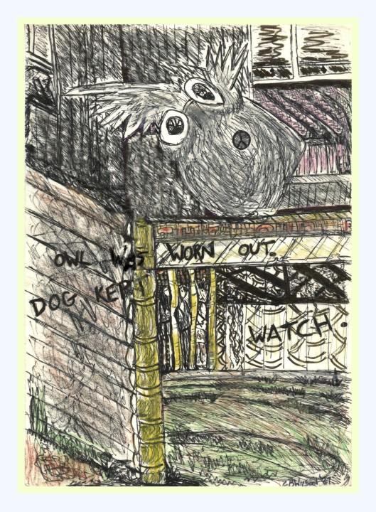 Owlwatch 3