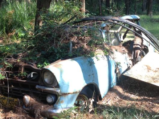 MJ Car